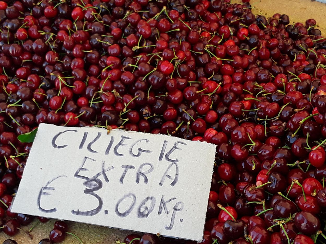 Ferrovia cherries are the very best - May is the time to find them - Discover Puglia