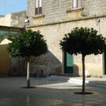 Most people know about Lecce and Otranto, don't miss out on the small towns in Brindisi and the Salento - Discover Puglia with us